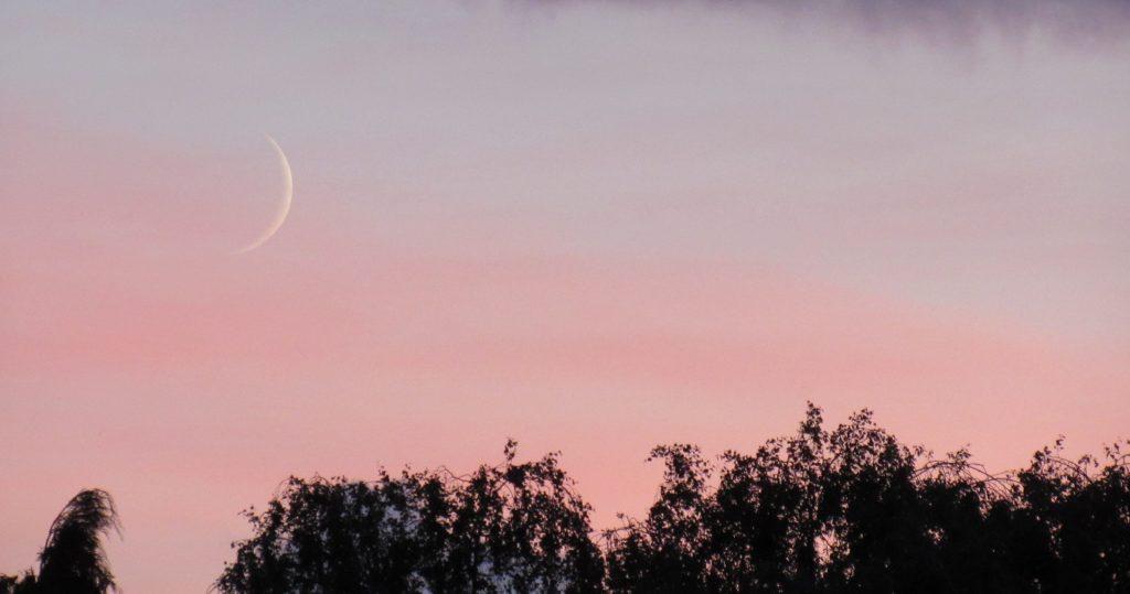 New Moon near sunset seen from Orpington